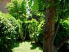Nella nordica primavera nel mio giardino il verde è esploso