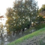 fiume_piena_06