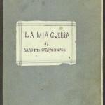 amina4